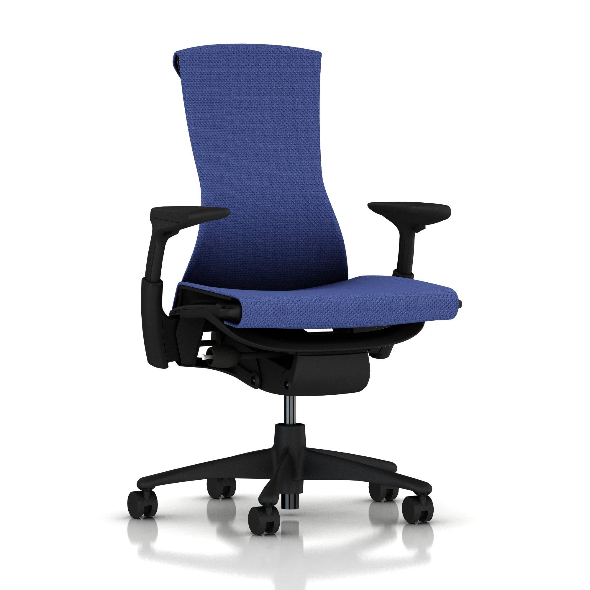Embody Chair Iris Blue Balance with Graphite Frame by Herman Miller  sc 1 st  The Perfect Chair Ergonomic Zero Gravity Recliner Chair from Human ... & Herman Miller Embody Chair Iris Blue Balance with Graphite Frame and ...